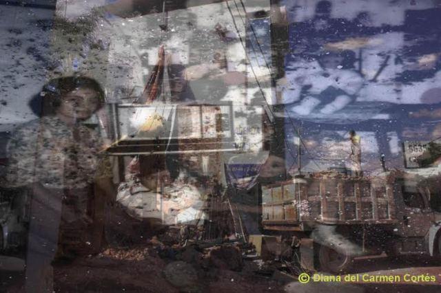 """Obra """"La Casa  de los Olivos"""", de Diana del Carmen Cortés Hernández, artista de Cuernavaca, Morelos, México"""