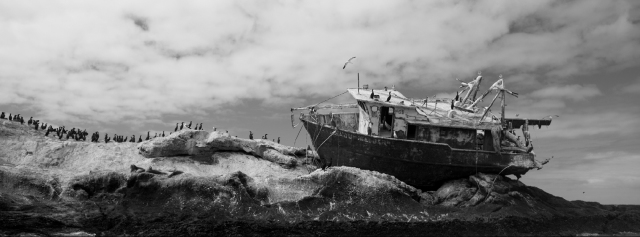Una de las imágenes del libro que Alejandro Rivas presentará en marzo, en La Paz, Baja California.